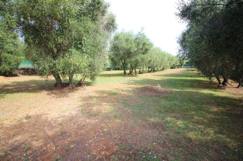Vente terrain Peymeinade 285000€ - Photo 4