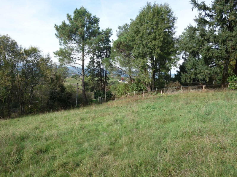 Vente terrain Cosnac 40 000€ - Photo 3