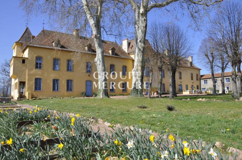 Loire - roanne - château des xvio- xviio - xviiio s - 850 m²
