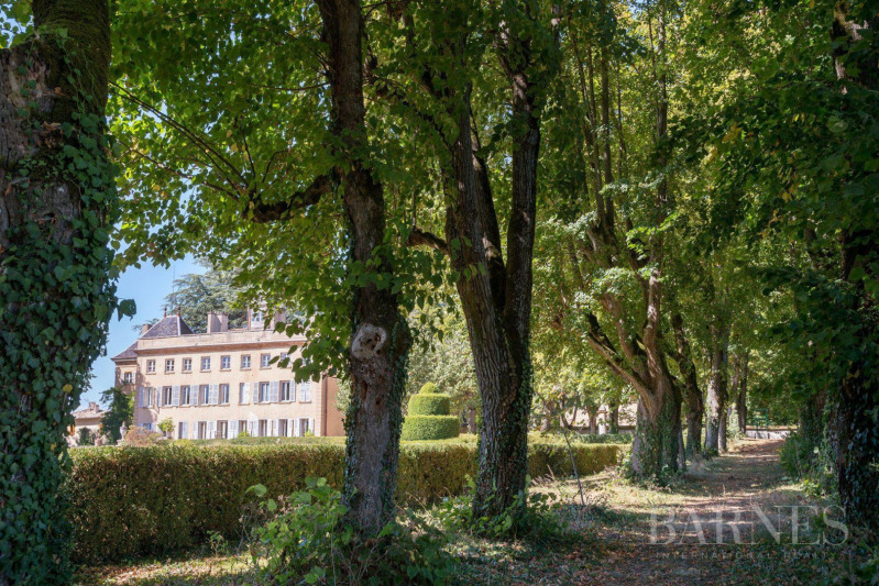 Vente de prestige château Villefranche-sur-saône 2625000€ - Photo 2