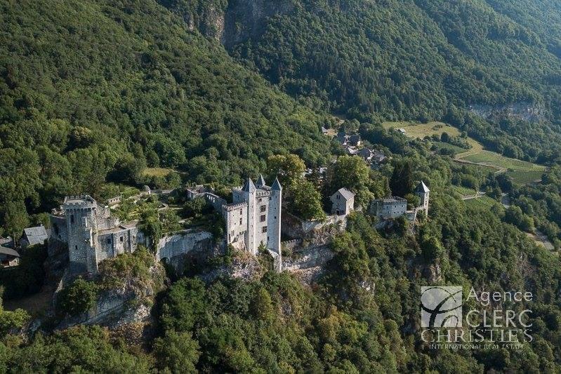 Vente de prestige château Saint-pierre-d'albigny 4250000€ - Photo 3