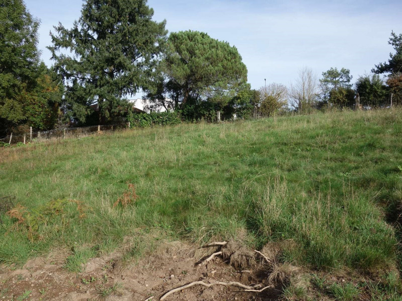 Vente terrain Cosnac 40 000€ - Photo 11
