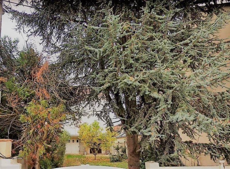 Sale house / villa Le mans 260400€ - Picture 1