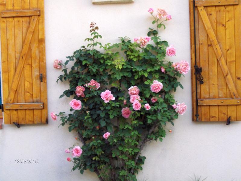 Пожизненная рента дом Lambesc 520000€ - Фото 10