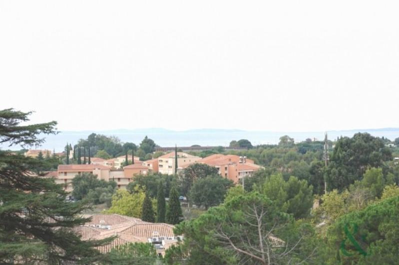 Vente de prestige château La londe les maures 2400000€ - Photo 4