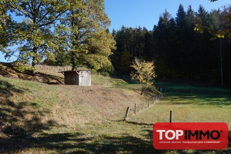 Sale site Raon l etape 39000€ - Picture 2