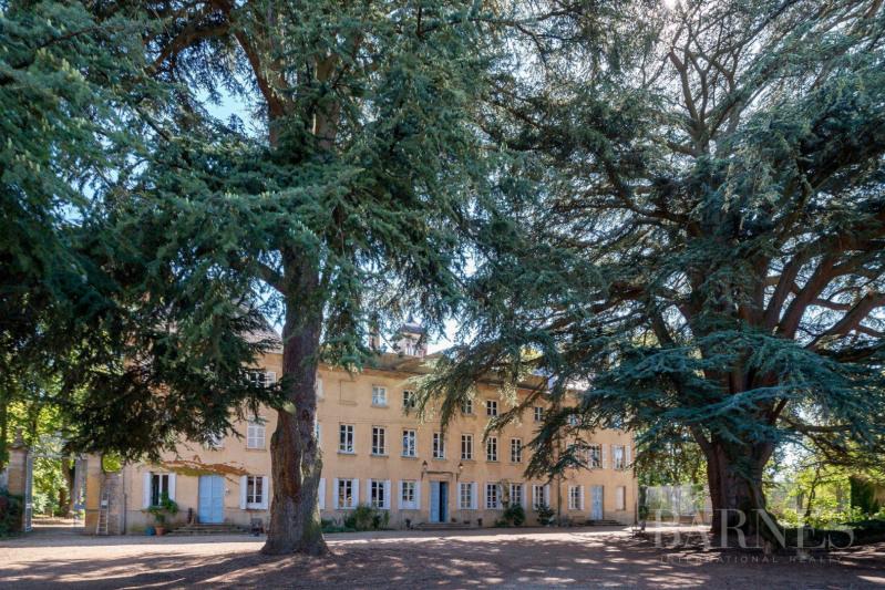 Vente de prestige château Villefranche-sur-saône 2625000€ - Photo 3