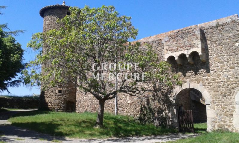 Ardèche limite isere - château médiéval a rénover - calme et