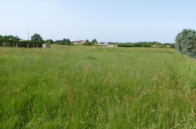 Sale site Montbeton 65000€ - Picture 1