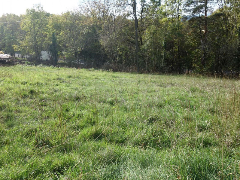 Vente terrain Cosnac 40 000€ - Photo 1