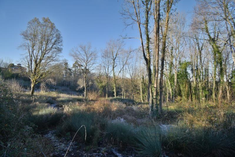 Vente terrain Jurancon 71000€ - Photo 1