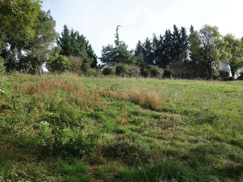 Vente terrain Cosnac 40 000€ - Photo 7