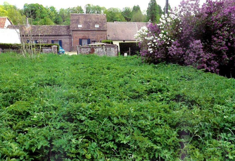 Vente terrain Chaumont en vexin 76500€ - Photo 3