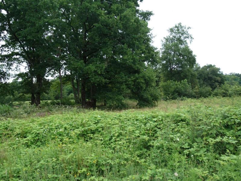 Vente terrain Ussac 64500€ - Photo 8