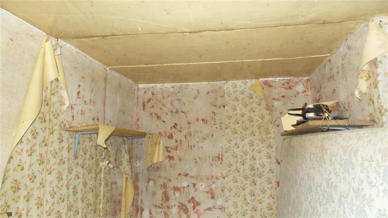 Venta  casa Chezy sur marne 63000€ - Fotografía 9