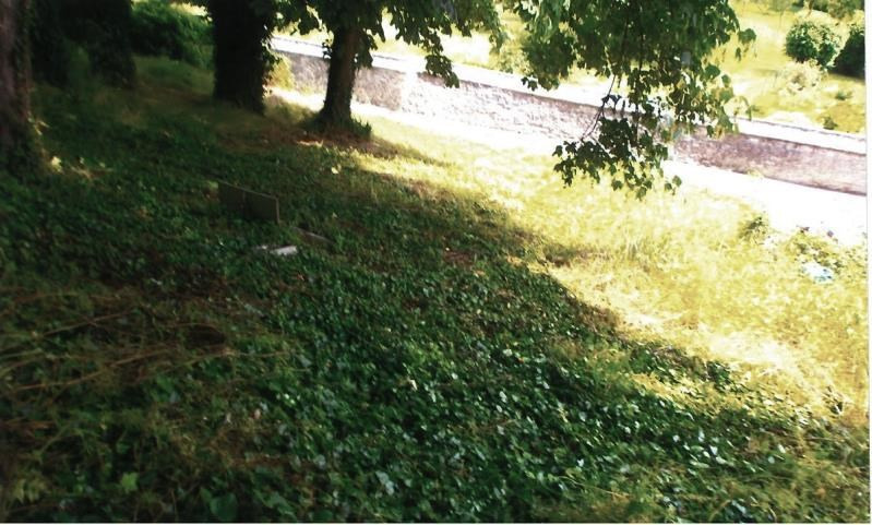 Vente terrain Chaumont en vexin 66000€ - Photo 3