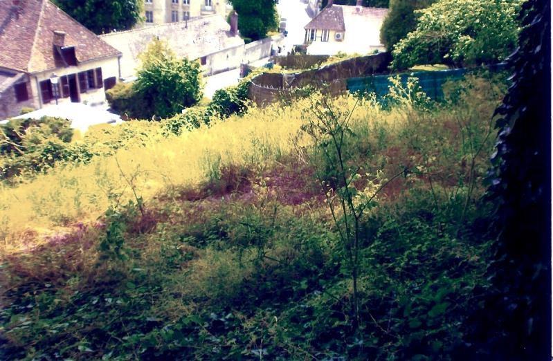 Vente terrain Chaumont en vexin 66000€ - Photo 2