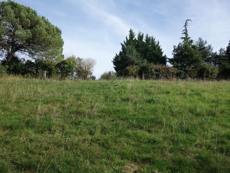 Vente terrain Cosnac 40 000€ - Photo 9
