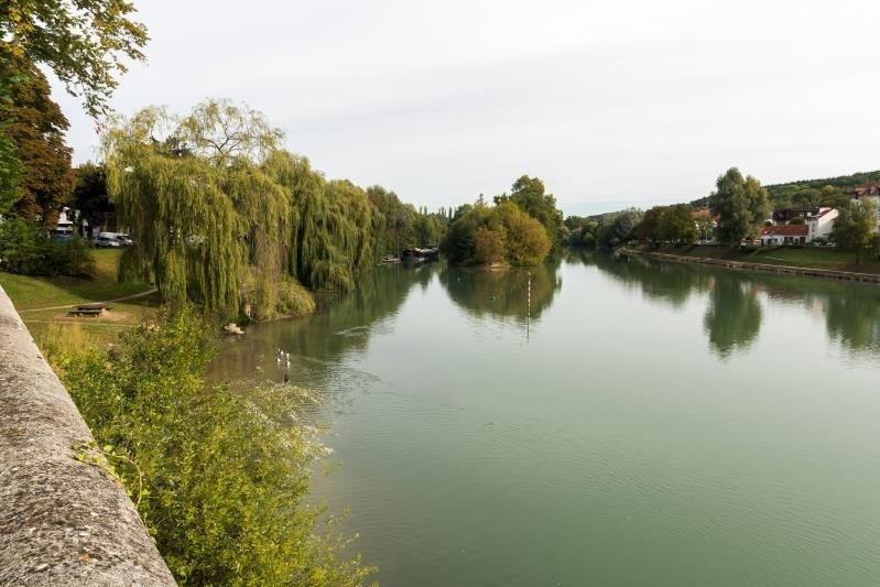 Verkoop  huis La ferte sous jouarre 630000€ - Foto 6