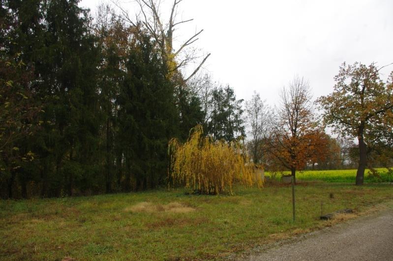Immobile residenziali di prestigio casa Obenheim 736980€ - Fotografia 3