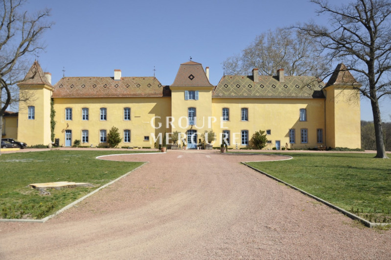 Vente de prestige château Roanne 1850000€ - Photo 4