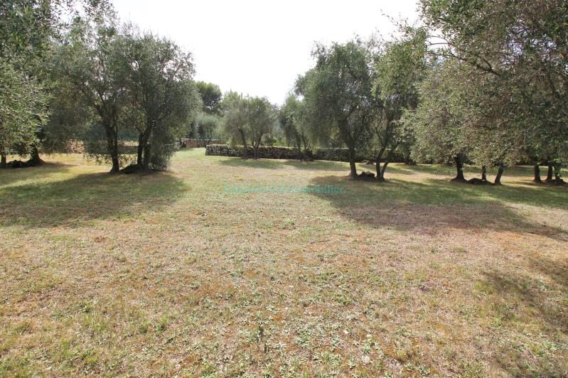 Vente terrain Peymeinade 285000€ - Photo 3
