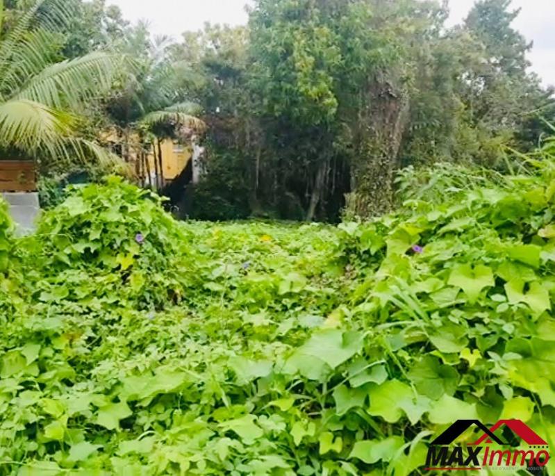 Vente terrain Le tampon 140000€ - Photo 2