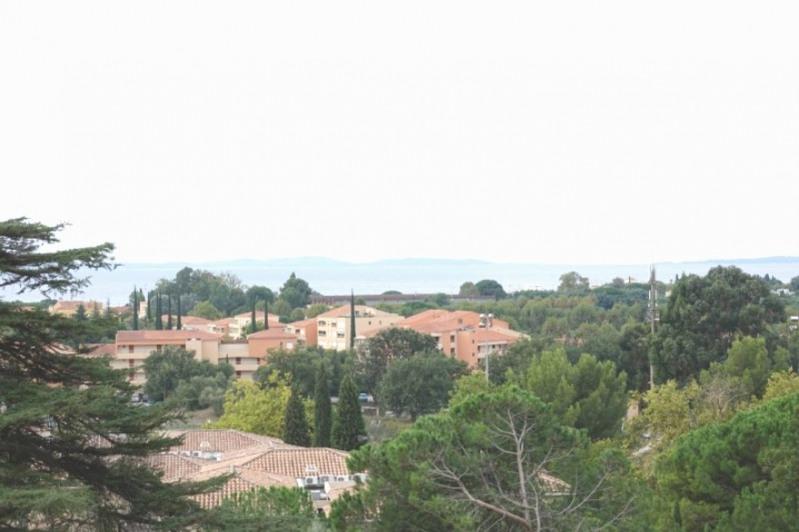 Immobile residenziali di prestigio castello La londe les maures 2400000€ - Fotografia 4