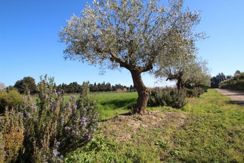 Vente terrain Saint cyprien 315000€ - Photo 2