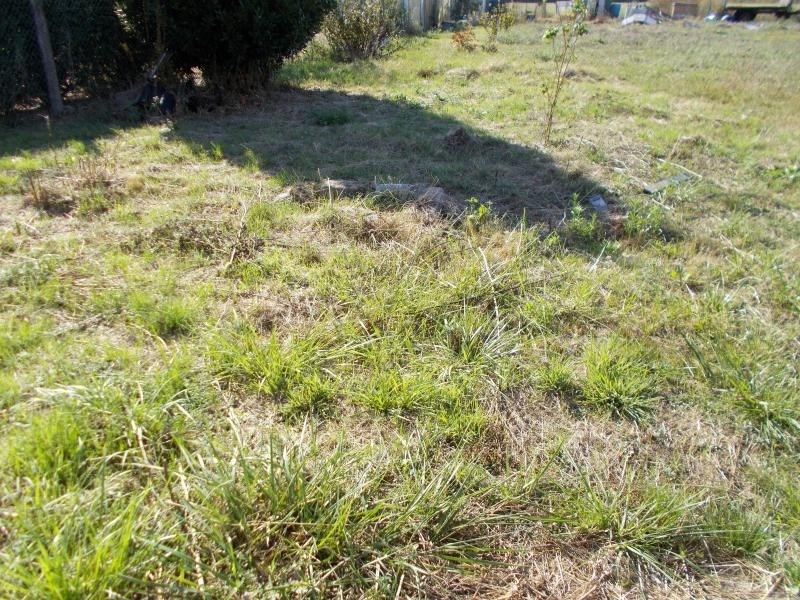 Vente terrain Druye 39600€ - Photo 1