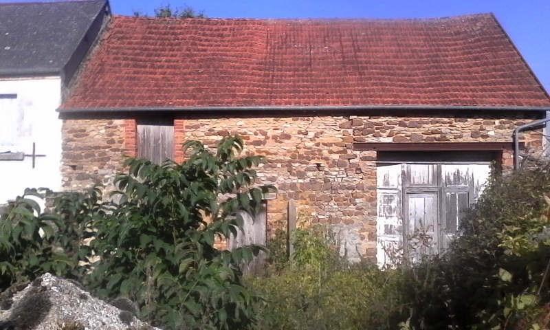 Vente maison / villa Neuvy deux clochers 68000€ - Photo 3
