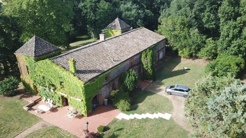 Vente de prestige château Lisle sur tarn 872000€ - Photo 1
