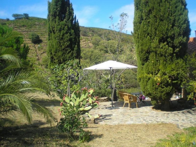 Vente maison / villa Banyuls sur mer 497000€ - Photo 13