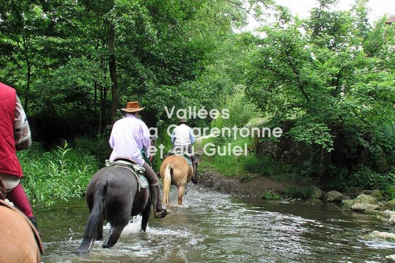 Vente maison / villa Montreuil-l'argille 28500€ - Photo 10