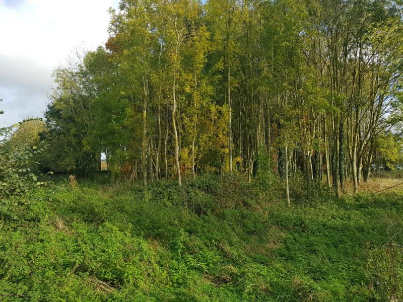 Vente terrain Arques 351080€ - Photo 4