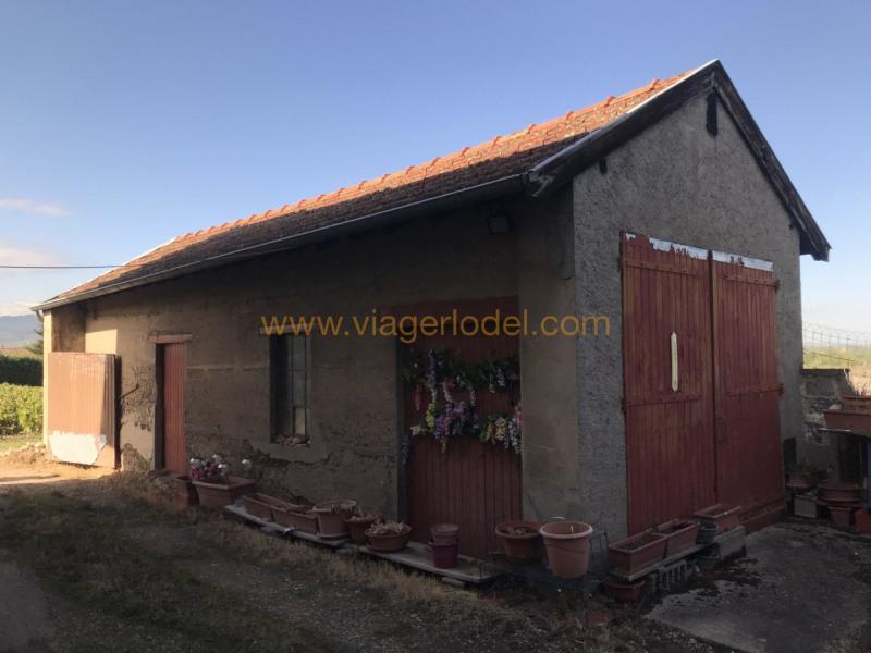 Verkauf auf rentenbasis haus Belleville-en-beaujolais 68000€ - Fotografie 7