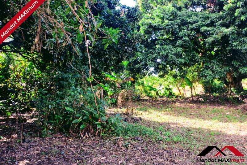 Vente terrain Saint benoit 1106897€ - Photo 9