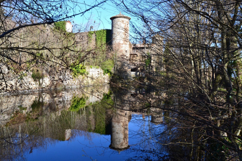 Vente de prestige château Condrieu 960000€ - Photo 6