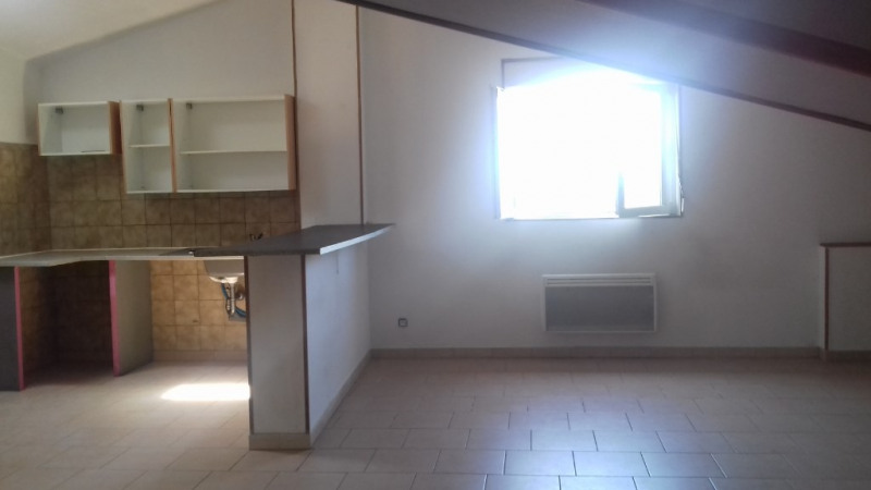 Location appartement Villasavary 500€ CC - Photo 3