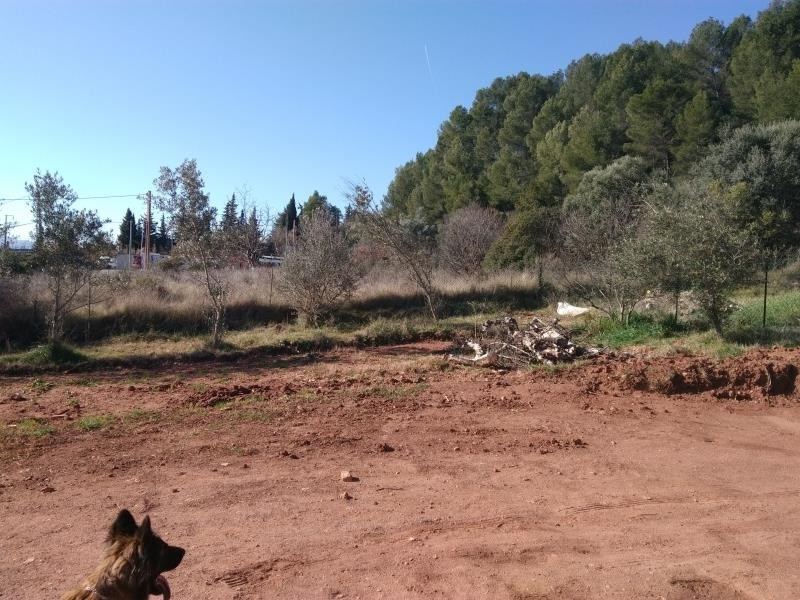 Vente terrain Le cannet des maures 160 000€ - Photo 2