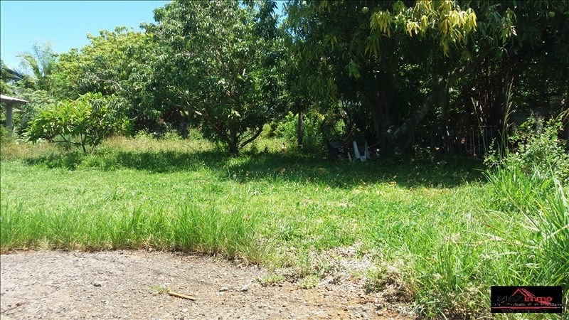 Vente terrain St joseph 430 000€ - Photo 1
