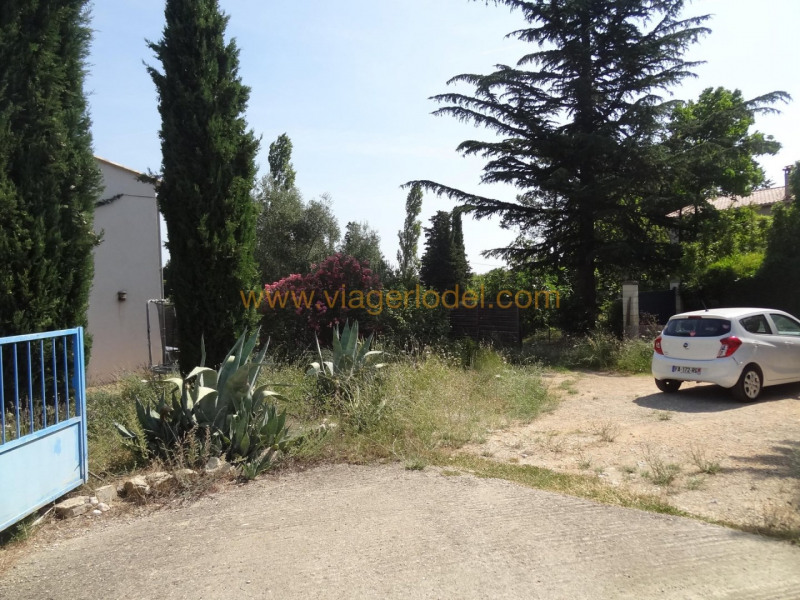 Vitalicio  casa Cardet 32000€ - Fotografía 2