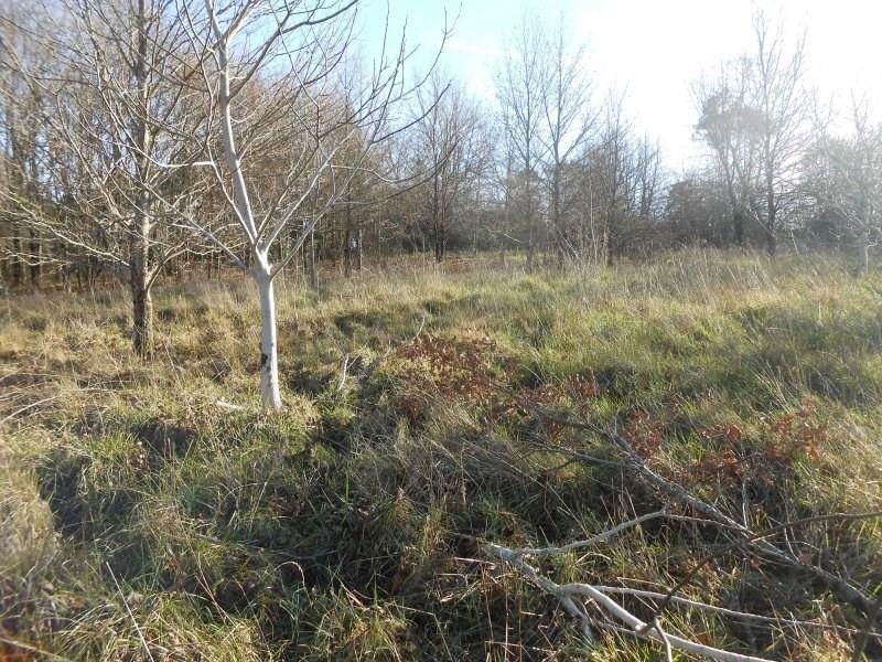 Vente terrain Montguyon 55000€ - Photo 2