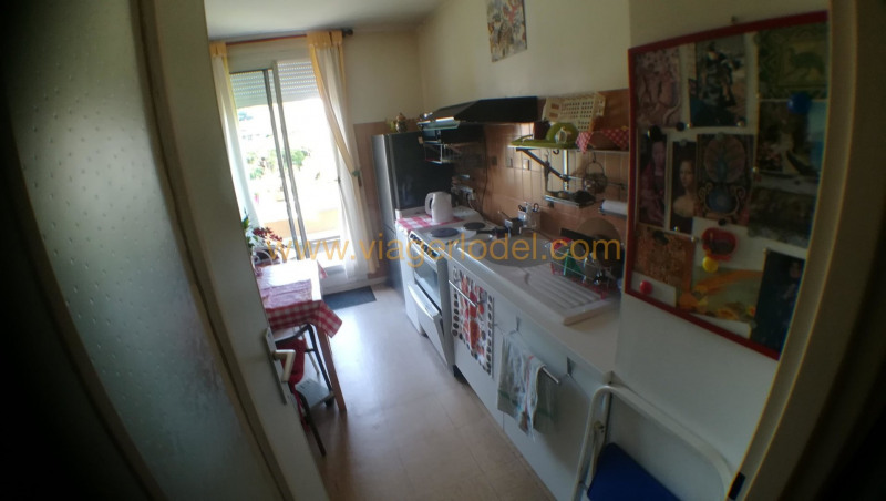 Viager appartement Toulouse 52500€ - Photo 6