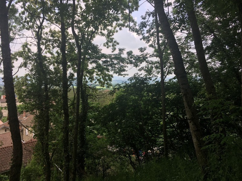 Vente terrain La baume-d'hostun 75000€ - Photo 3