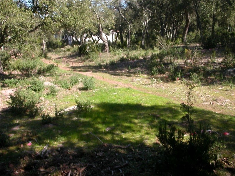 Vente terrain Le cannet des maures 140 000€ - Photo 3