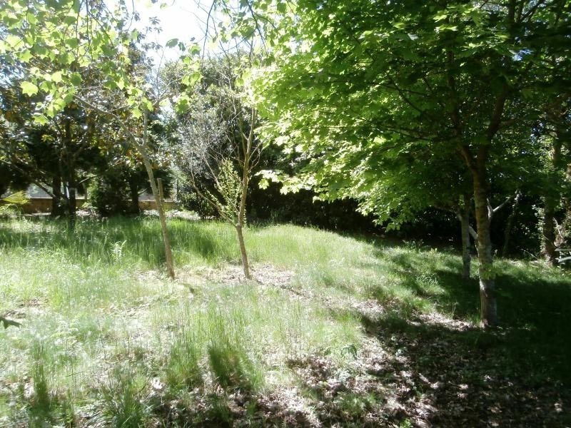 Sale site St amans soult 65 000€ - Picture 5