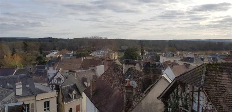 Location appartement La roche guyon 588€ CC - Photo 1