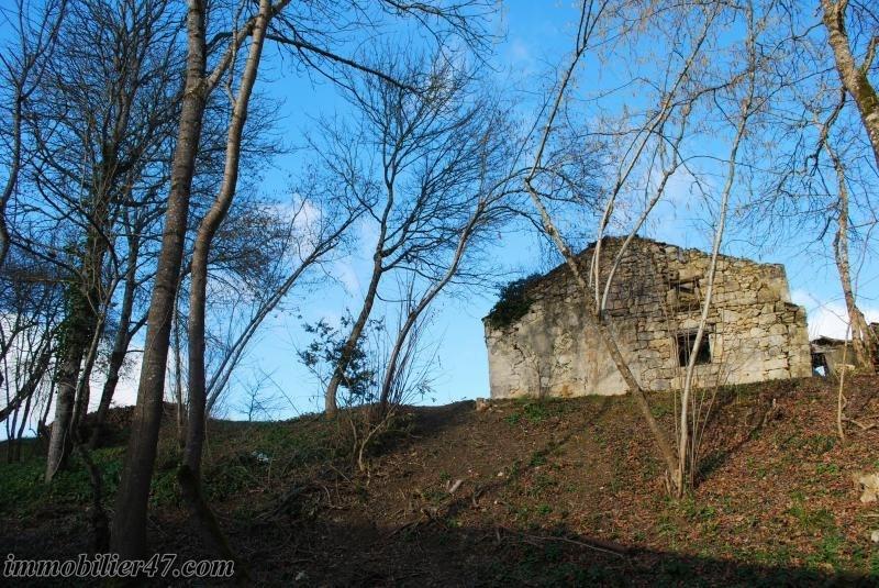 Sale house / villa Colayrac st cirq 245000€ - Picture 12