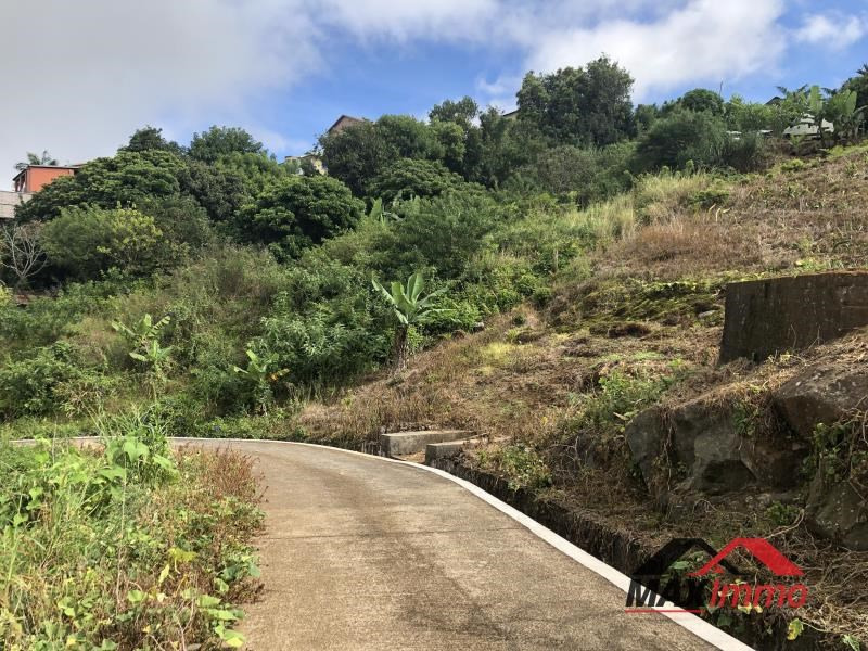 Vente terrain Petite ile 140000€ - Photo 6